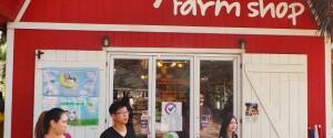 ขากลับแวะซื้อของฝาก ณ ร้าน Dairy Home Farm Shop